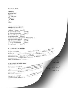Basic Business Plan LibreOffice Template